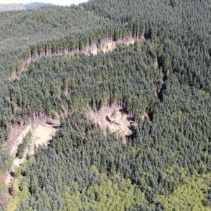 3D Drone Scan - Fall Creek Landslide